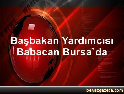 Başbakan Yardımcısı Babacan, Bursa'da