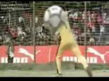 Matrix Futbol