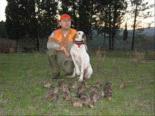 Köpeğin Ve Avcının En İyi Anlatıldığı Çulluk Avı