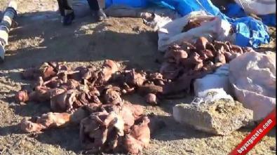 500 kuzusu ölü doğan adam yardım bekliyor