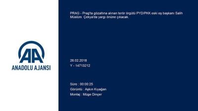 Terör örgütü PYD/PKK'nın eski eş başkanının duruşması yarın yapılacak - PRAG