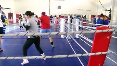 Milli boksörlerin kampı sona erdi - KASTAMONU
