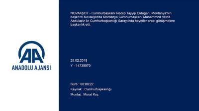 Erdoğan-Abdulaziz heyetler arası görüşmesi - NOVAKŞOT