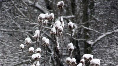 Kar yağışı - KIRKLARELİ