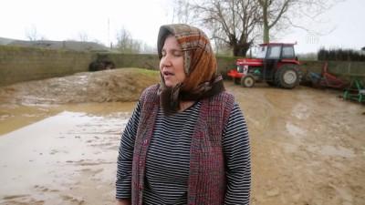 Uzunköprü'de dere taştı, köyü su bastı - EDİRNE