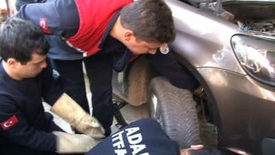 Otomobilin motor kısmında sıkışan köpeği itfaiye kurtardı