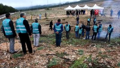 Şehit Savcı Kiraz için hatıra ormanı oluşturuldu - MUĞLA