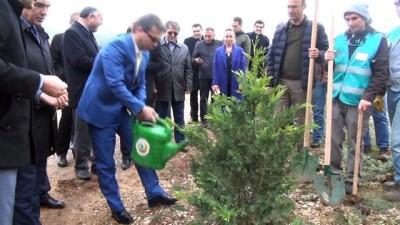 Şehit Savcı adına Muğla'da hatıra ormanı