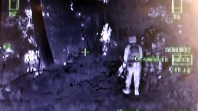 Amanoslar'daki terör operasyonu - HATAY
