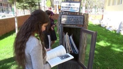 'Ağaç Kütüphane' hiç kapanmıyor - AMASYA