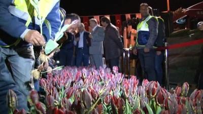 Dünyanın en büyük Türk Bayrağı temalı lale peyzajı Kayseri'ye yapılıyor