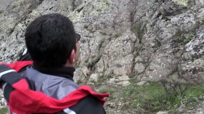 Dağda mahsur kalan çocuklar kurtarıldı - VAN