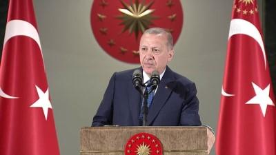 Cumhurbaşkanı Erdoğan: 'Meclisi kanun çıkarma konusunda tek merci haline getiriyoruz' - ANKARA