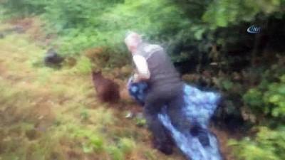 Yavru ayı kurtarma çalışması renkli görüntülere sahne oldu