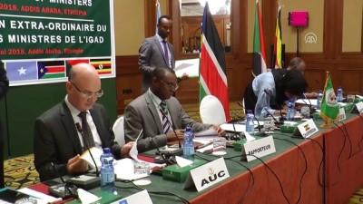 Doğu Afrika ülkeleri Güney Sudan için olağanüstü toplandı - ADDİS ABABA