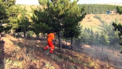 Ateş yakan çocuklar, ormanı kül edecekti