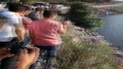 Balıkesir'de araç gölete uçtu