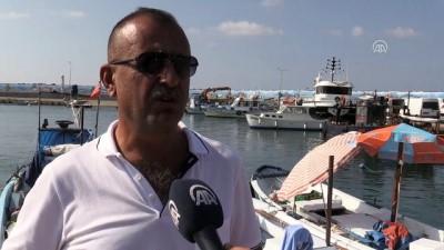 Batı Karadenizli balıkçılar yeni sezondan umutlu - DÜZCE