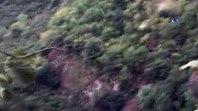 Dehşet anları kamerada...Kaza yapan otomobil uçurumdan böyle yuvarlandı