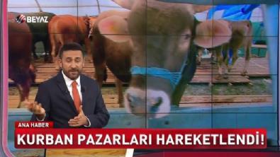 Kurban pazarı hareketlendi (Beyaz Tv Özel Haber)