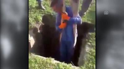 Kuyuya düşen tosun vinçle kurtarıldı - KARS