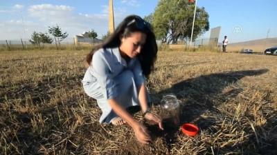 Ahıska Türkü Zaitova'yı duygulandıran şehitlik ziyareti
