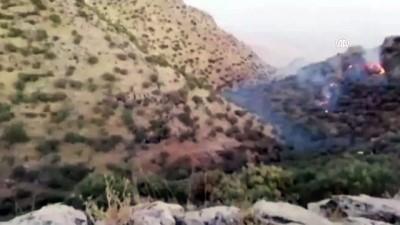 2 PKK'lı teröristin etkisiz hale getirilmesi - MARDİN