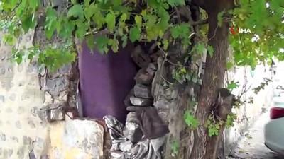 Siverek'in tarihi taş evleri bakımsızlıktan yıkılıyor
