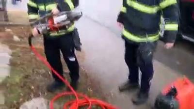 Demir kapıya başı sıkışan köpek yavrusu kurtarıldı - AKSARAY