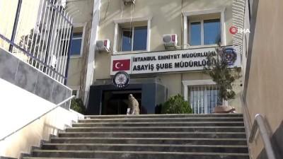 İstanbul'da işlenen Azeri cinayetlerinin altından kan davası çıktı