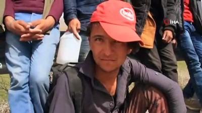 Yaya olarak yurda kaçak yollarla giren 60 kaçak göçmen yakalandı
