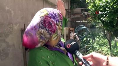 Fatih'te eve giren yılan paniğe neden oldu
