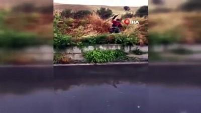 - Sulama kanalında mahsur kalan köpekleri itfaiye kurtardı