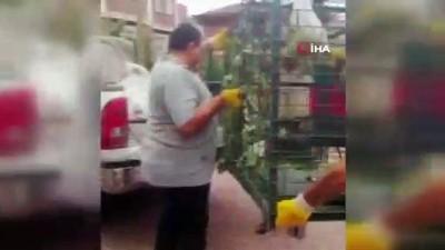 Konya'da bir süredir mahallede dolaşan sahipsiz maymun yakalandı
