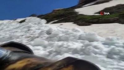 Haziran ayında yapılan kar çalışmasında dağ keçisi görüntülendi