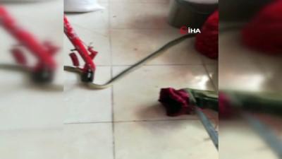 Markete giren yılan itfaiye ekipleri tarafından yakalandı