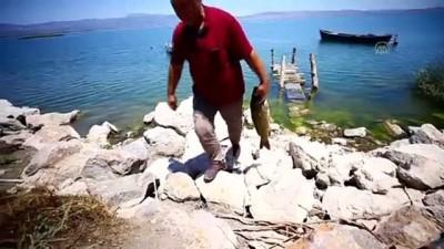 Suğla Gölü'nün balıkçı aileleri yeni sezondan umutlu - KONYA
