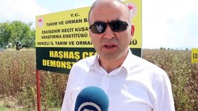 'Hüseyinbey' ve 'Çelikoğlu' Denizli'ye uyum sağladı - DENİZLİ
