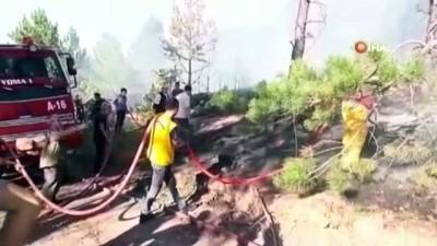 Çorum'da 2 ayrı orman yangını: 40 dönümlük alan kül oldu