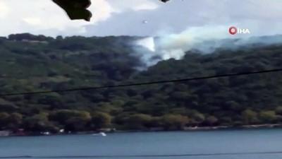 Anadolu Kavağı'nda ormanlık alanda yangın
