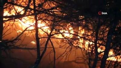 Hatay'da 25 farklı noktada orman yangını...Alevler Hatay semalarını aydınlattı