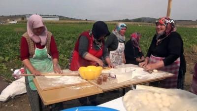Devrekani'de 5. Patates Hasat Şenliği düzenlendi