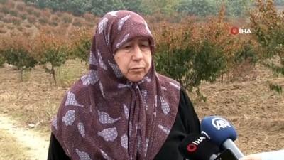 Bursa'da dublörlü dolandırıcılık... 50 milyon liralık arazilerini elinden aldılar