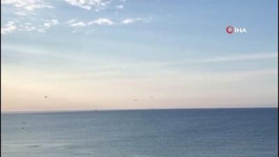 Doğa özüne dönüyor: Deniz Yunuslara kaldı