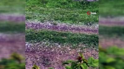 Iğdır'da kuvvetli fırtına sonrası dolu yağdı