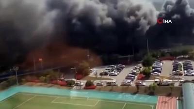 - Güney Kore'deki yangında ölü sayısı 36'ya yükseldi