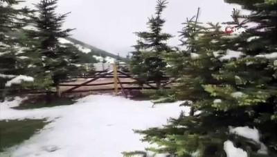 Samsun'a mayıs ayında kar sürprizi