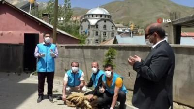Şükür kurbanının kesildiği Hakkari'de cuma namazı karlı Sümbül Dağı'na karşı kılındı