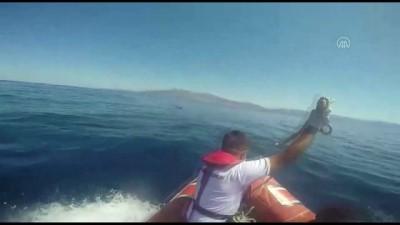 Ege Denizi'nde botları batan 27 sığınmacı kurtarıldı - ÇANAKKALE