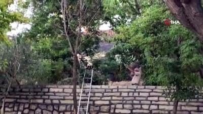 Polatlı'da sit alanında yangın çıktı